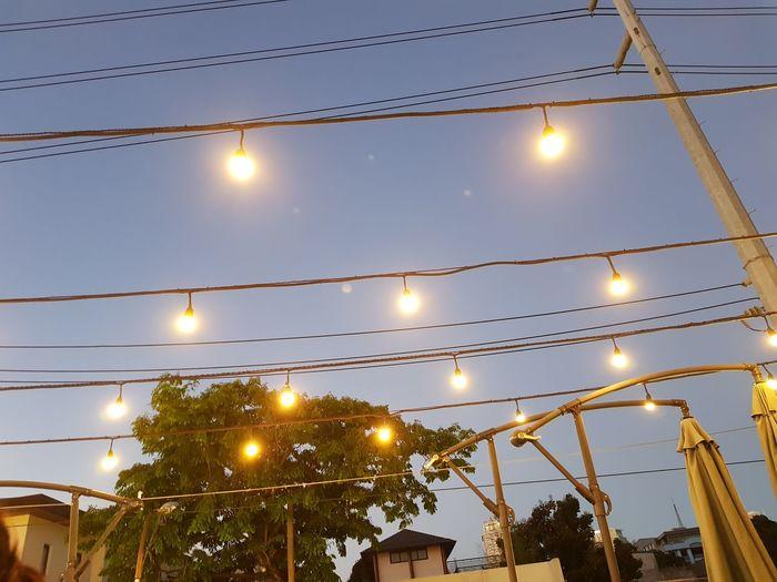 Illuminated City Tree Hanging Dusk Sky