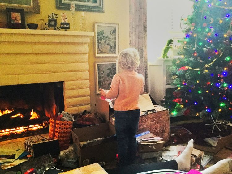"""""""Can't believe they still have their tree up..."""" 13048553"""