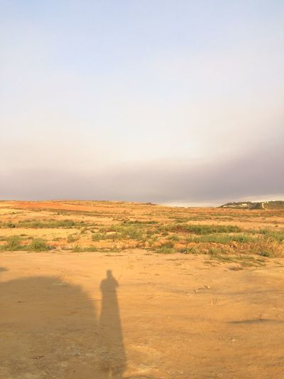 EyeEm Selects Landscape Nature Shadow Field Scenics Arid Climate Tranquil Scene Desert Beauty In Nature Sand Tranquility Outdoors Clear Sky Day Sky Sand Dune No People Mammal