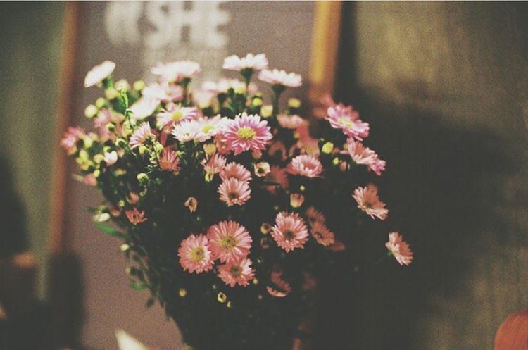 Yine mi güzeliz yine mi çiçek.. Flowers Bavlikizi Happiness