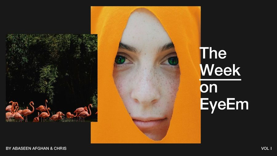 #MondayMotivation: Kick off your week with our photography highlights from the last 7 days → https://www.eyeem.com/blog/the-week-on-eyeem-01-2018 The Week On EyeEm Editor's Picks