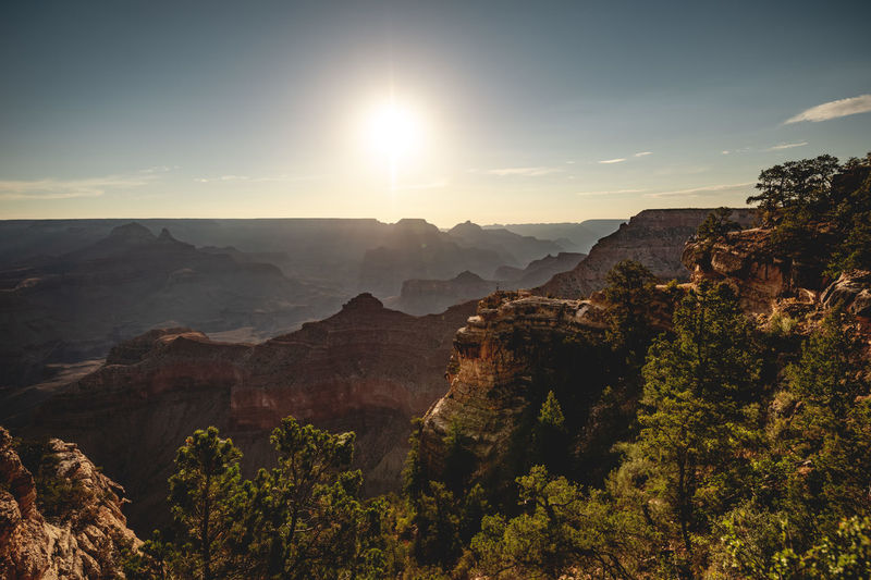 Grand Canyon National Park ☀️ Early morning shot from the South Rim. Shot with Nikon D800E / Tamron 15-30mm wide angle lens. Formation Lens Flare Outdoors Travel Sunlight Rock Landscape Sun Tree Mountain Range Non-urban Scene Nature Tranquility Sky Grand Canyon Grand Canyon National Park South Rim Rim Plateau Morning Against The Sun Pine Tree Landmark Iconic Hiking Hiking Adventures Iconic Landmark Vastness Places Discover  Tourism Destination Travel Destinations Edge Cliff Wide Angle High Resolution Canyon USA Arizona Eroded Scenery View Wonders Of The World Escarpment Roadtrip Discover Places One Person 1 Person Adventure