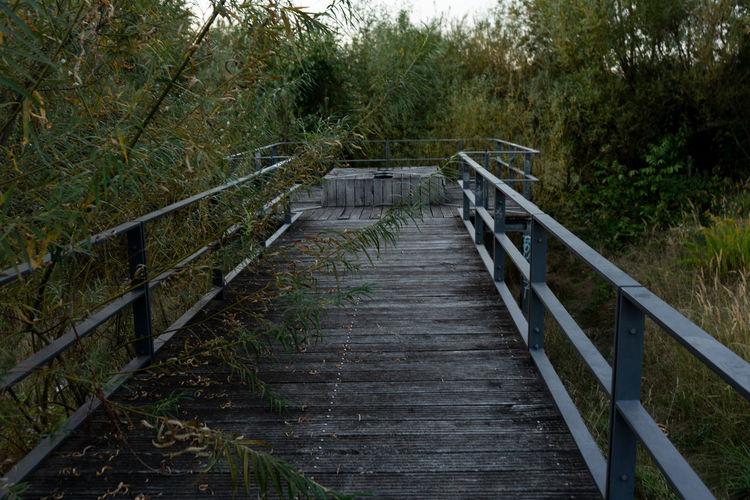 a walk a way