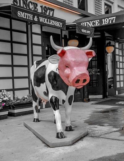 FARBTUPFER - Fleischfarben / Kuh in Schweinsmaske Onecolor Onecolorphoto Chicago Fleichfarben Fotokunst Hautton Kuh Eine Farbe Flesh Tone One Color One Color Remains Photo Art Photo Art 📷🎨 EyeEmNewHere