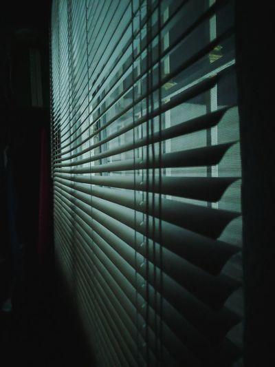 Window Taking
