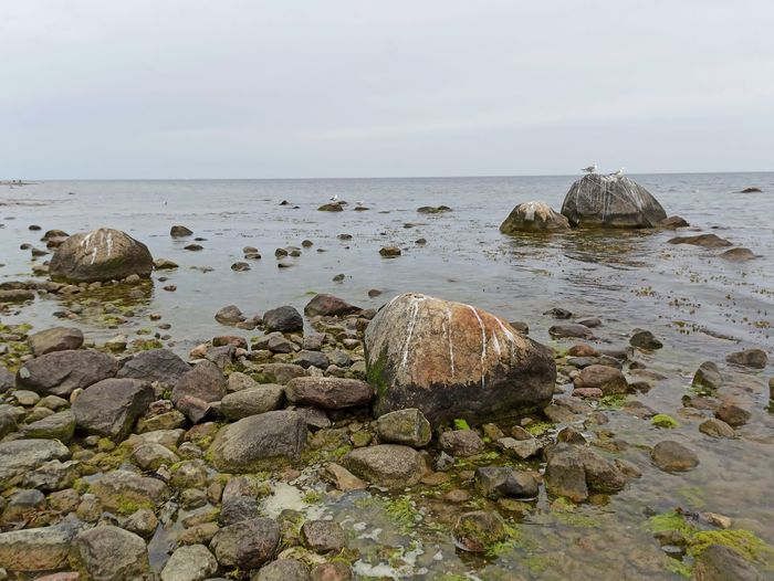 Rocks on shore against sky