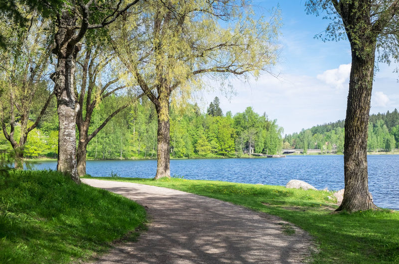Scenic summer landscape with lake and idyllic paht at bright summer day in Finland. Plant Tree Water Nature Scenics - Nature Tranquility Tranquil Scene Sky Green Color Beauty In Nature No People Landscape Outdoors Tree Trunk Growth River Day Finland Path Pathway Daytime Summer Summertime Idyllic Lush Foliage