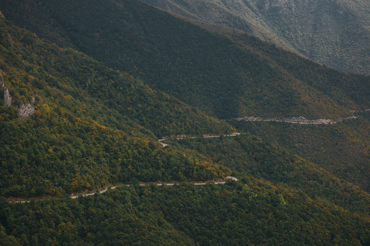 High angle view of trees and road in the mountains