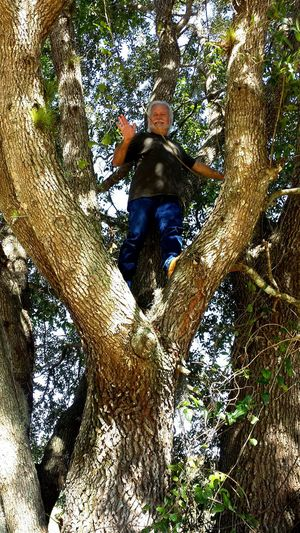 You're never to old to feel like a kid. Oak Tree Danger Dangerous Height Self Portrait Having Fun Havingfun Tree Trees Tree Trunk Treeclimbing Climbing Climbing Trees Climb Climb Up! Outdoors Outdoor Outdoor Photography Outdoor Life Fun Being Silly Being A Kid Again Tree Low Section Men