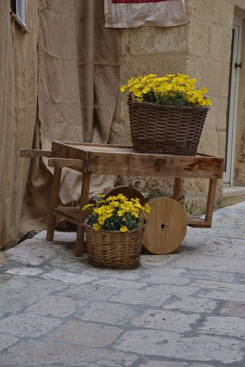 Container Plant Basket Potted Plant Flowering Plant Wicker No People Wall - Building Feature Wood - Material Architecture Growth Nature Built Structure Seat Broom Outdoors Footpath Chair Day Flower