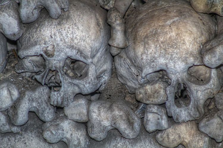 Ossarium Skulls Skulls And Bones Beauty Of Decay Dead Headshot Photography Focus On Foreground Mementomori Memento Mori