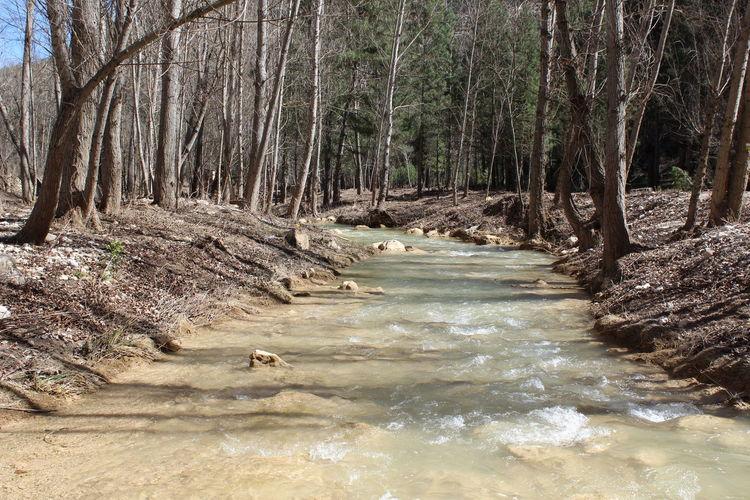 Senda fluvial