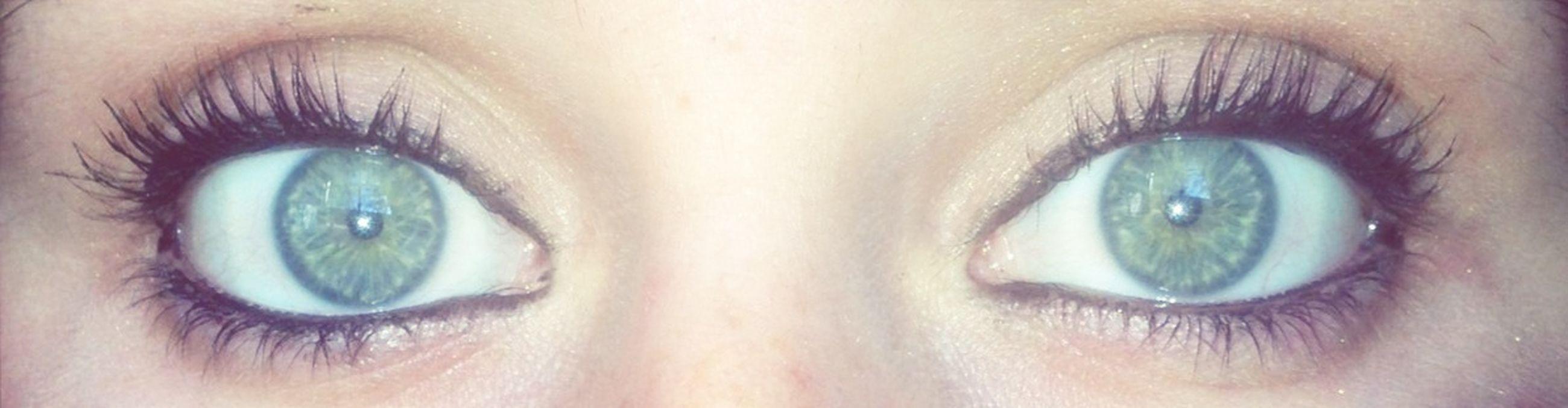 human eye, close-up, looking at camera, portrait, human face, reflection, eyelash, headshot, lifestyles, part of, eyesight, sensory perception, leisure activity, young adult, front view, eyeball, extreme close-up