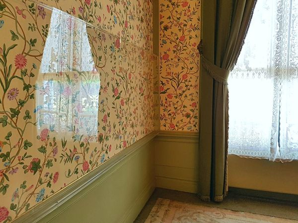 Indoors  Architecture No People Day Luxury Indoors  Pattern Architecture Soestdijk Palace Estate Soestdijk Monument Lace Curtain Window Sunny Day Reflection Wallpaper Flowers