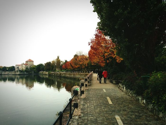 Autumn mood🍁💓 Tree Water Sky Real People Nature People Outdoors ArchitectureNature Beautiful Hungary Natural Mobilephoto The Fall Castle Cou Autntryside Autumn Neighborhood Map