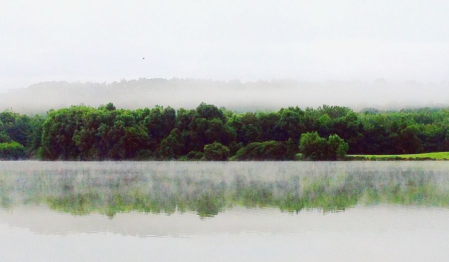 Took this somewhere in France. Scenery France Trees Green Mirroreffect Lake Summer Spring Aviary Vscocam First Eyeem Photo