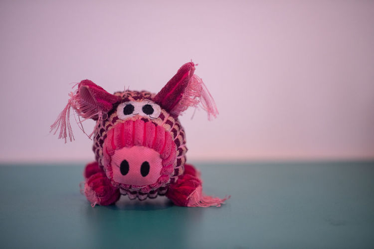 Piggy Representation Pink Color Animal Representation No People Toy Single Object Indoors  Copy Space Close-up Water Art And Craft Stuffed Toy Creativity Studio Shot Animal Sea Still Life Craft Purple Piggy
