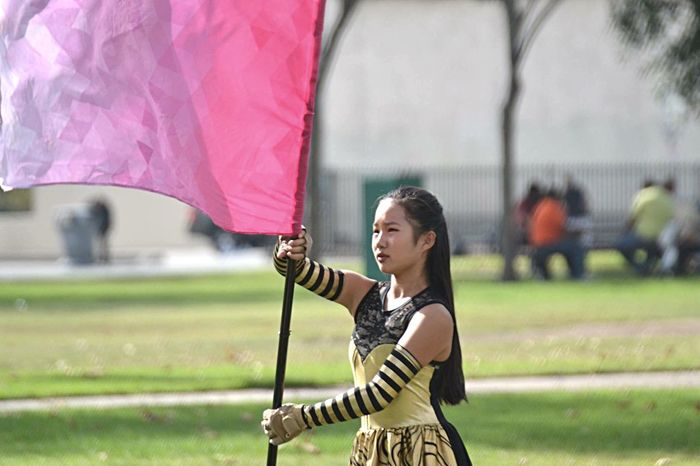 Pink Colorguard Flag Yellow Costume