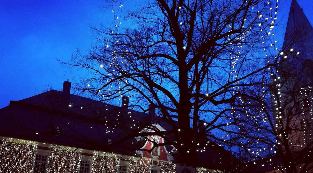 Low Angle View Tree No People Built Structure Outdoors Architecture Christmas Lights Christmas Decoration Lights Christmas Market Soest
