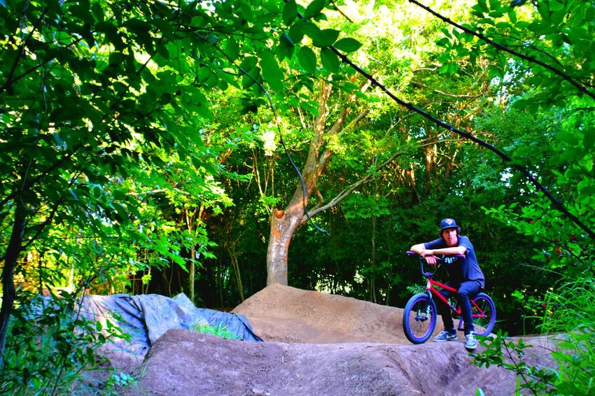 Bmxlife Dirt Jumps Popular Photos Check This Out