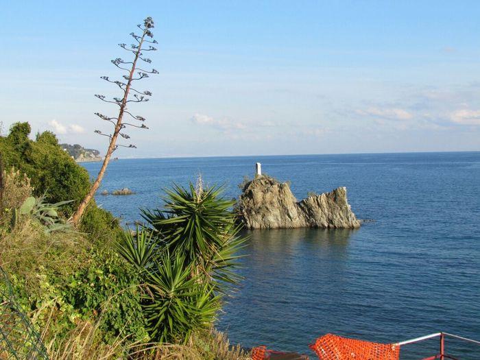 Albissola Marina Liguria - Riviera Di Ponente Liguria