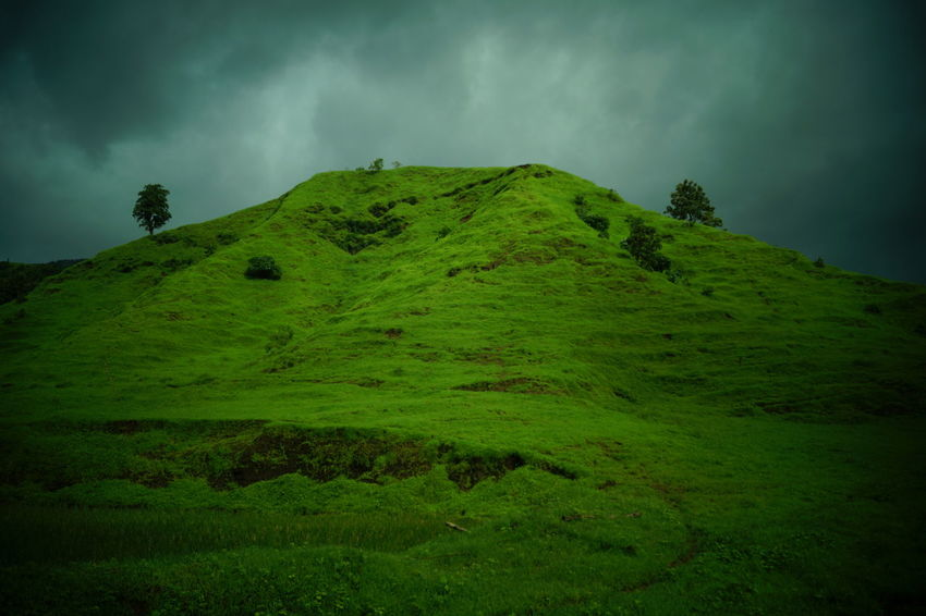 Scenics No People Tree Day Outdoors Dramatic Sky Forest Mountain Landscape Nature Beauty In Nature Cloud - Sky Live For The Story Best EyeEm Shot Naturelovers Mountains