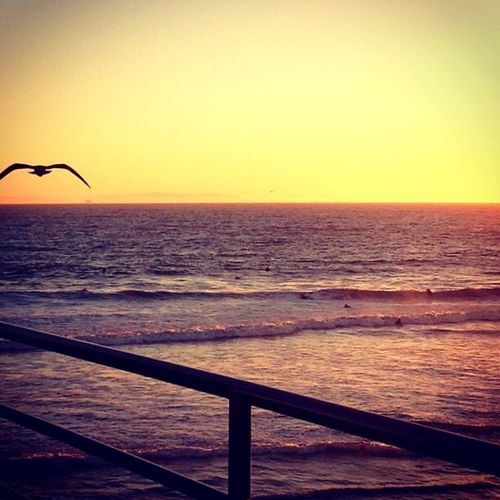 Sunset_collection Aroundtheworld MyPhotography Waves, Ocean, Nature Ocean View Birds Capture The Moment Sunsetlover Moments Pier California Photography Taking Photos Magic Colors Sky_collection Sea And Sky Happiness Peaceful