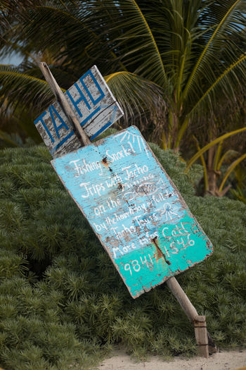 snorkelling sign Painted Palms Quintana Roo, México Sign Snorkling Xpu-ha Beach Day Leaning No People Outdoors Turquoise