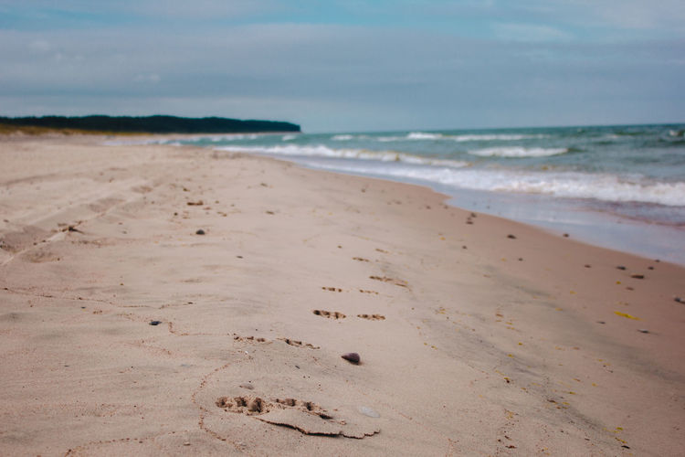 FootPrint Footpath Latvia Latvija Aquatic Sport Beach Beauty In Nature Day Dog Horizon Horizon Over Water Land Motion Nature Outdoors Sand Scenics - Nature Sea Sky Surfing Tranquil Scene Tranquility Ventspils Water Wave