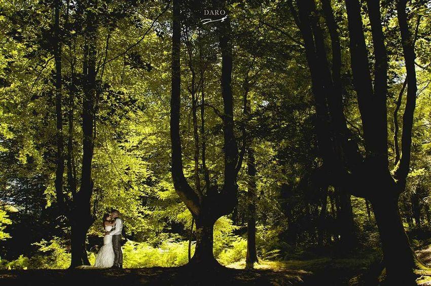 Daro fotografia , postboda en bilbao Fotografia Fotografiadebodas Darofotografia Bilbao España Wedding Wedding Photography Paisvasco