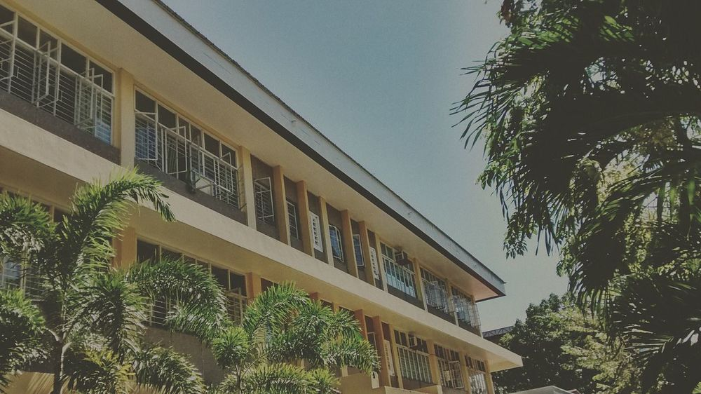 My school ☺ (elem building) — Architecture Tree Building Exterior Window Clear Sky Palm Tree