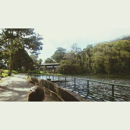 Good afternoon ❤ This is a really paradise in Nicaragua 😍 ah... this is my number phone +505 88459282 to talk me into whatsapp Paradise EyeEm Nature Lover Greenday Sunset Nature River Enjoying Life Nicaragua WhatsApp Numberphone