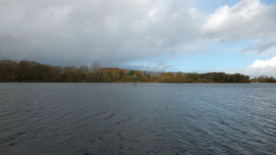 Clouds Englan Lake Reflection Reservoir Sky Swindon Tree