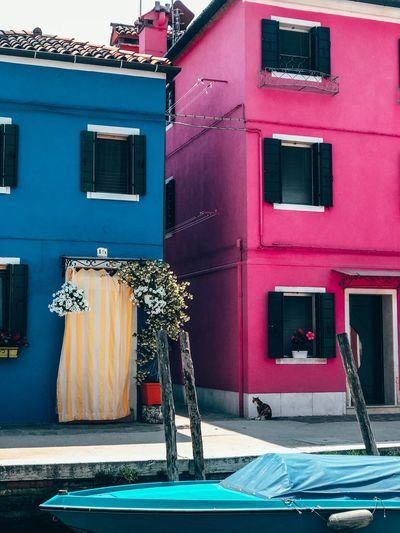 Built Structure Building Exterior Architecture Building No People Day Window City Nature Street Outdoors Sunlight Shadow Residential District Pink Color Wall - Building Feature Multi Colored Text Communication House