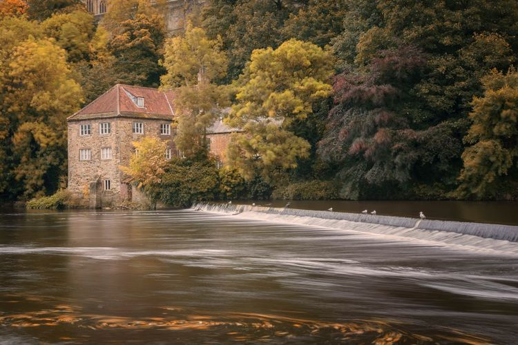 Down by the river Nikonphotographer Sigma 18-35 F1.8 Nikonphotography Long Exposure Durham City Durham Nikond7200 Autumn🍁🍁🍁 Autumn River