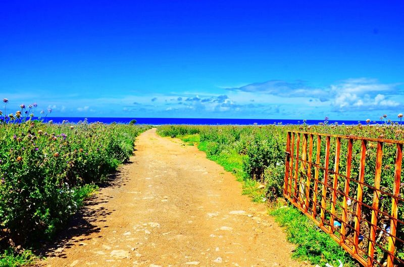 The road to the sea Nature Grass No People Landscape Italy Outdoors Sky Day Sicily Sicilia Summer Plant Sea Road San Vito Lo Capo