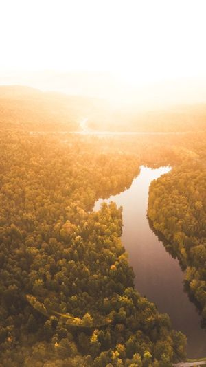 High Angle View Of River Amidst Forest During Sunny Day