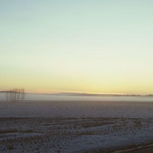 Beautiful sunset at ypäjä