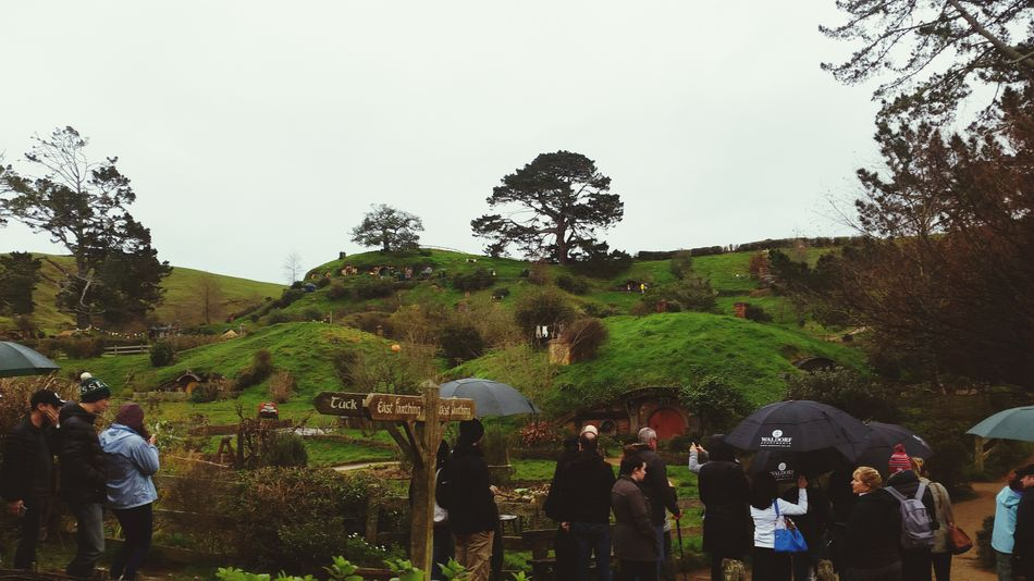 Hobbiton Movie Set Tours Hobbit House Greenery