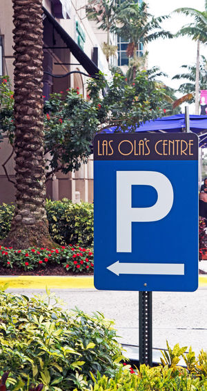 Arrow Symbol City City Life Cityscape Cityscapes Communication Day Direction Florida Ft Lauderdale Guidance Information Information Sign Outside Palm Trees Perspective Road Sign Sign Text United States Western Script