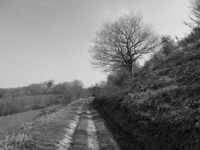country paths. Countryside Relaxing Shades Blackandwhite Black And White Photography