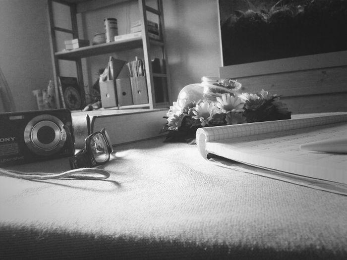 Rechts vom Bild mein Block. Links meine Brille. Buch (Die Tribute von Panem - Flammender Zorn) hinter der Brille : meine Kamera. :). Einfaches Bild