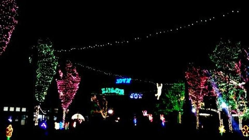 Zoo lights! Night Illuminated Christmas Christmas Decoration Christmas Lights Christmas Lights!  Outdoors Christmas Lights Christmas Lights!  Christmas Decorations Christmastime Nightphotography Night Photography Dark Photography Dark Because Even In Darkness There Is Beauty...