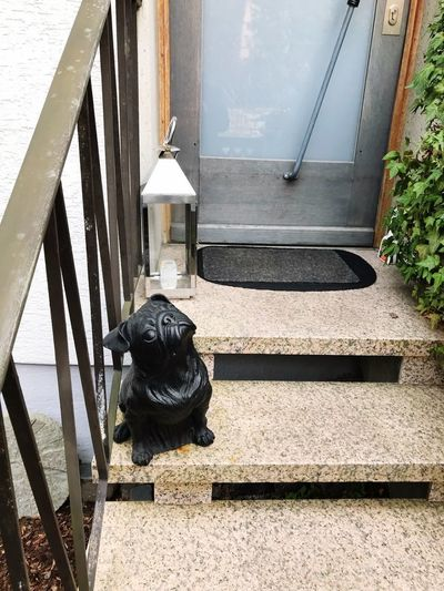 Woof What? Puglife Pugsofinstagram Pug BewareOfDog Sayhi Entrance Day Nature Domestic Architecture Pets Built Structure Sunlight No People One Animal Outdoors