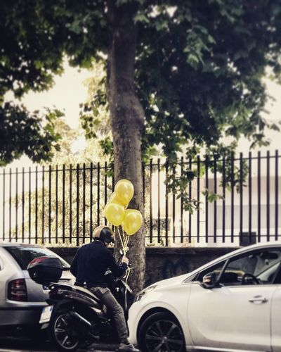 Lemon balloons Balloons Yellow Balloons Car Motor Vehicle Tree Mode Of Transportation Plant Land Vehicle Transportation Yellow Outdoors EyeEmNewHere