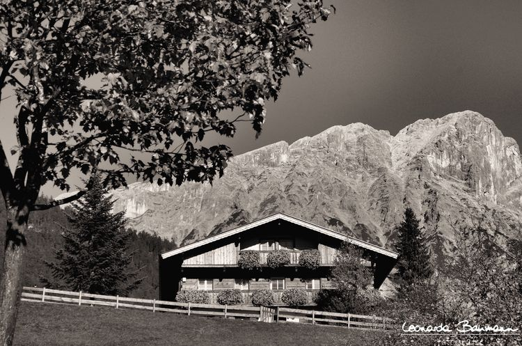 Tirol  Austria Österreich Heimat Bergdoktorhaus Mountain Hohe Munde Nature Tree Built Structure Architecture Day Outdoors Building Exterior Sky Beauty In Nature No People Country House Blackandwhite Black And White Black & White Schwarzweiß