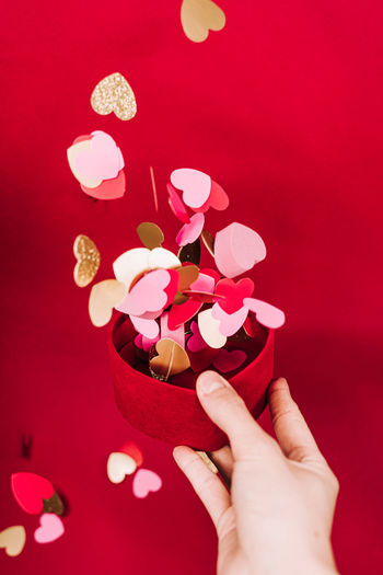 Close-up of hand holding pink flower against red background