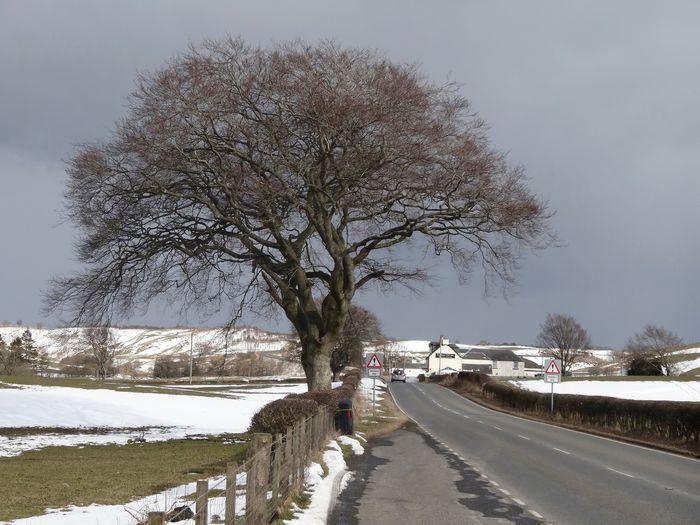 Ayrshire,
