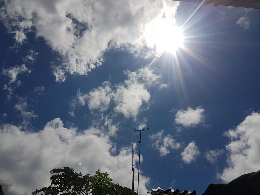 that afternoon the sun was very hot, gombong city Cloud Beauty In Nature Blue Blue Sky Cloud - Sky Clouds And Sky Day Gombong Kebumenmemotret Low Angle View Nature No People Noon Outdoors Plant Silhouette Sky Sun Sunlight Tree White Color