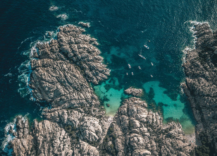 Cala Coticcio Cala Coticcio Animal Wildlife Animals In The Wild Beauty In Nature Day High Angle View Italy Marine Nature No People Outdoors Rock Rock - Object Rock Formation Sardaigne  Scenics - Nature Sea Seascape Solid Tranquil Scene Tranquility Turquoise Colored UnderSea Underwater Water My Best Travel Photo